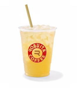 Drivu Fresh Orange Juice M