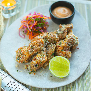Drivu Spicy Parmesan Chicken Wings