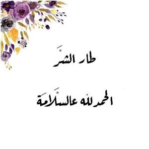 Drivu طار الشر الحمدلله عالسلامة Taar Al Shar Al Hamdelah Al Salama
