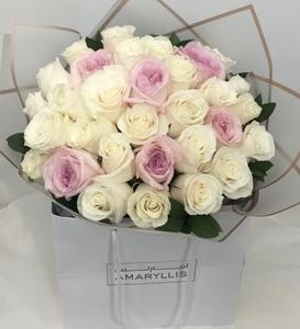 Drivu Pink & White