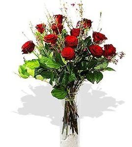 Drivu Dozen Red Roses in Vase
