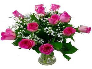 Drivu Dozen Pink Roses in Vase