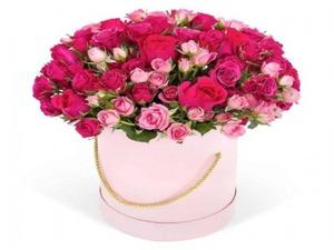Drivu Pink Bloom Box