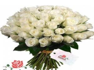 Drivu 50 Stem White Rose Bouquet