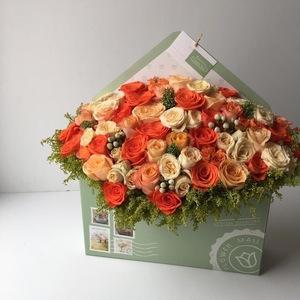 Drivu Envelope Box 12