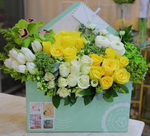 Drivu Envelope Box 4