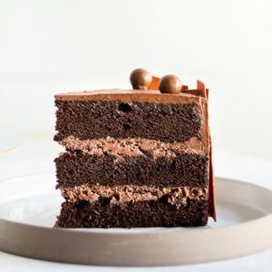 Drivu Chocolate Malt Cake Slice