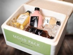 Drivu Mood Pack of 4