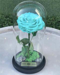 Drivu Forever Tiffany