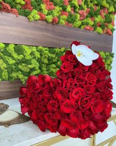 Drivu Red Heart