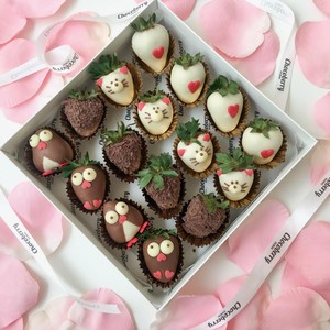Drivu Penguin & Kitty Strawberries (16 pieces)