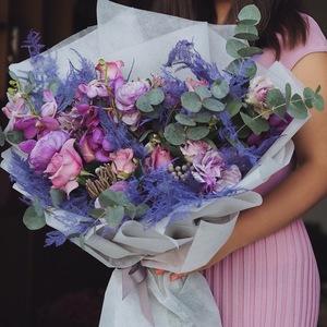 Drivu  Purple Dream