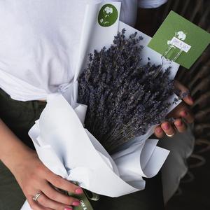 Drivu  Lavender Deluxe