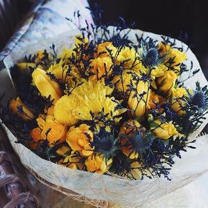 Drivu Lemon Nights