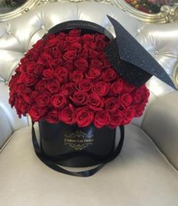 Drivu Red Graduation Roses
