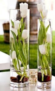 Drivu Tulips in Vases