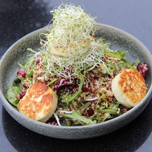 Drivu Quinoa & Grilled Halloumi Salad