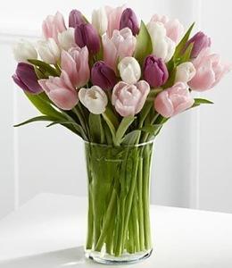 Drivu Mix Colors Vase