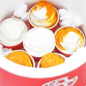 Drivu Mix Ice Cream Box