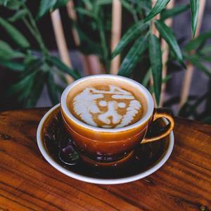Drivu Hot Roots Latte
