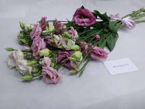Drivu Pink Lisianthus Stems