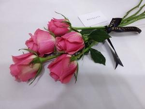 Drivu Pink Rose Stems