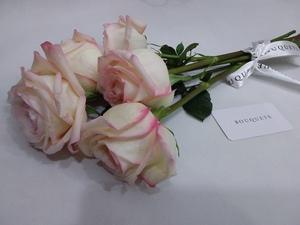 Drivu Ohara Rose Stems
