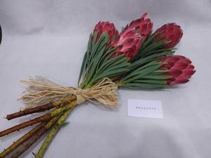 Drivu Red Protea Stems
