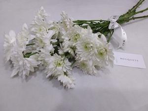 Drivu White Chrysanthemum Stems
