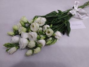 Drivu White Lisianthus Stems