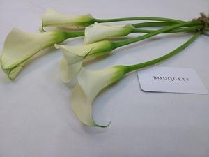 Drivu White Calla Lily Stems