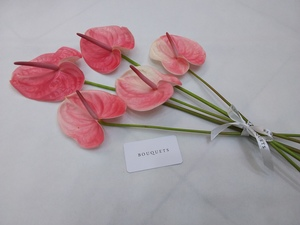 Drivu Pink Anthurium Stems