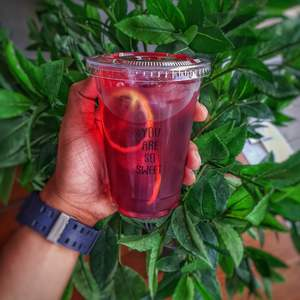 Drivu Hibiscus Ice Tea