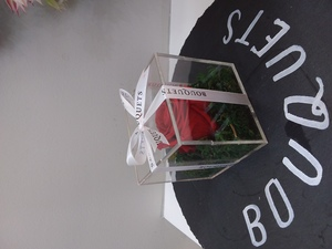 Drivu Red Infinity Rose In An Acrylic Box (1 Stem)