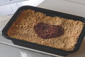 Drivu Honey Latte Cake