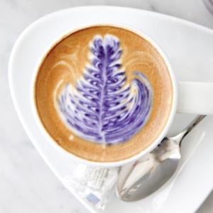 Drivu Lavender Cappuccino