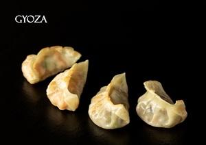 Drivu Chicken Gyoza