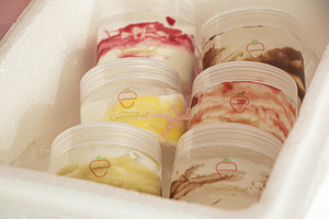 Drivu Mix Ice Cream (6 Bottles)