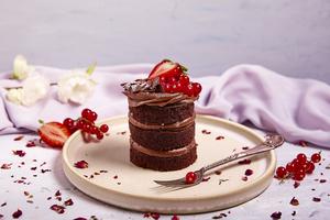 Drivu Chocolate Cinnamon Cake