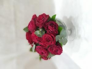 Drivu Red of love