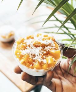 Drivu Coconut Sago