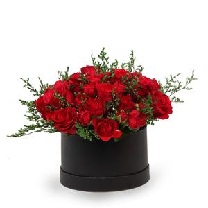 Drivu Red Roses Baby Roses in Black Box (BO1)