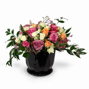 Drivu Mix Baby Roses (V10)