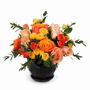 Drivu Mix Roses in Ceramic Vase (V6)