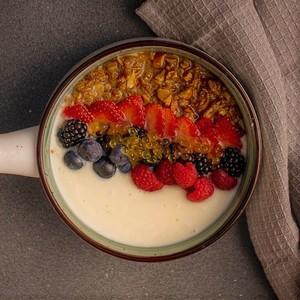 Drivu Yogurt Bowl