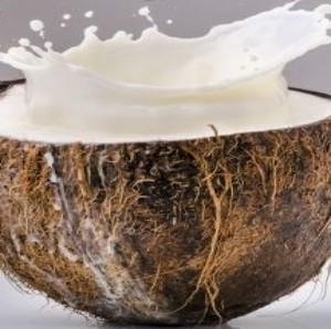 Drivu Coconut Juice  عصير جوز الهند الطبيعي