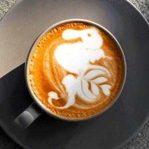 Drivu Midnight Latte