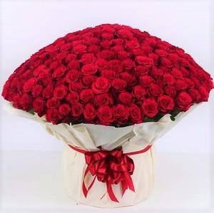 Drivu 30 Hand Rose Bouquets