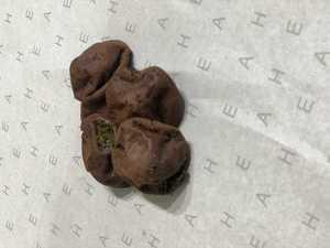 Drivu Cookies (5 pieces)