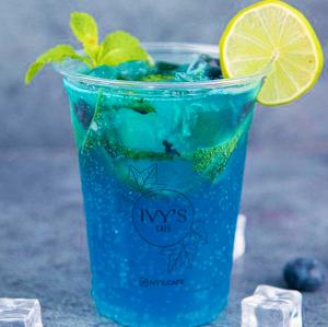 Drivu Blueberry